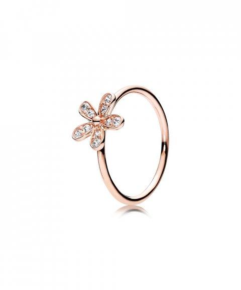 Pandora Rose Dazzling Daisy Joia Anel Mulher 180932CZ