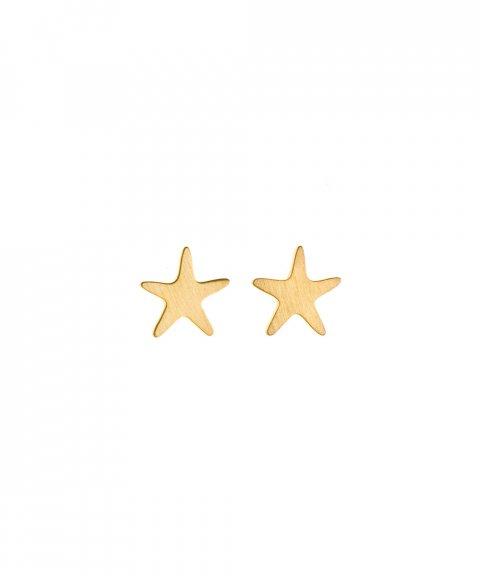 Omnia Wild Sea Star Joia Brincos Mulher E1167-D